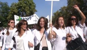 La manifestation des pharmaciens à Paris