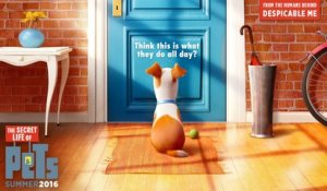 The Secret Life of Pets - Teaser Trailer #1 [VO|HD]