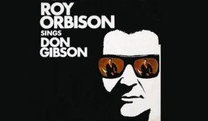 Roy Orbison - What about me?