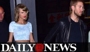 Taylor Swift Reportedly Wrote Calvin Harris Hit Song 'This is What You Came For'
