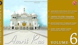 Various - Amrit Ras Volume 6 - Latest Shabad Gurbani 2017