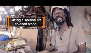 Burkina Faso: Giving a second life to dead wood