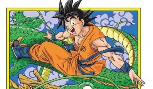 Dragon Ball Super (EN SUB) : interview exclusive avec le dessinateur Toyotaro