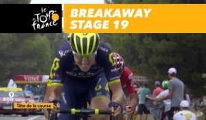 Cassure dans le peloton / Echelon in the breakaway - Étape 19 / Stage 19 - Tour de France 2017