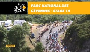 Parc national des Cévennes - Étape 14 / Stage 14 - Tour de France 2018