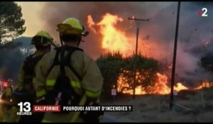Californie : pourquoi autant d'incendies ?