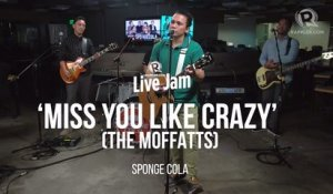Sponge Cola - 'Miss You Like Crazy' (The Moffatts cover)