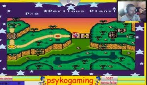 psykogaming super mario land 3 tantaga's return (14/08/2018 16:57)