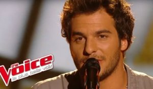 Pascal Obispo - Lucie | Amir Haddad | The Voice France 2014 | Prime 3