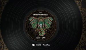 Acin - Wanna - Original Mix
