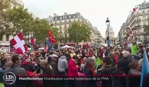 Manifestation : mobilisation à Paris contre l'extension de la PMA