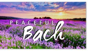 Peaceful Bach - The Best Piano Solo