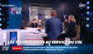 La chronique d'Anthony Morel : Les technologies au service du vin - 25/09