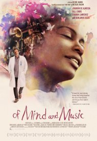 Affiche de Una Vida: A Fable of Music and the Mind