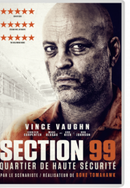 Affiche de Section 99
