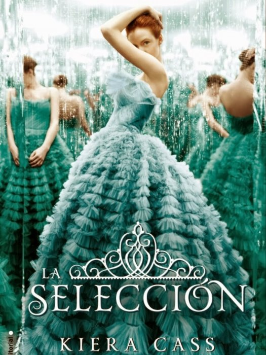 The Selection : Affiche