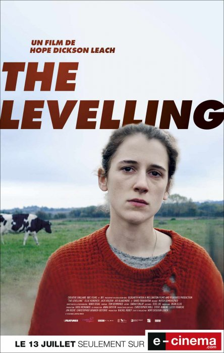 The Levelling : Affiche
