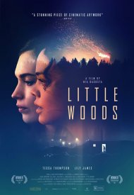 Affiche de Little Woods