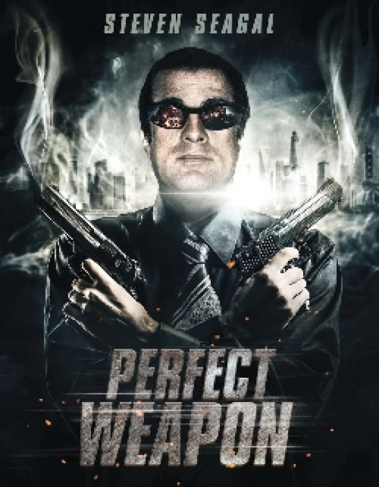 The Perfect Weapon : Affiche