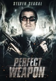 Affiche de The Perfect Weapon