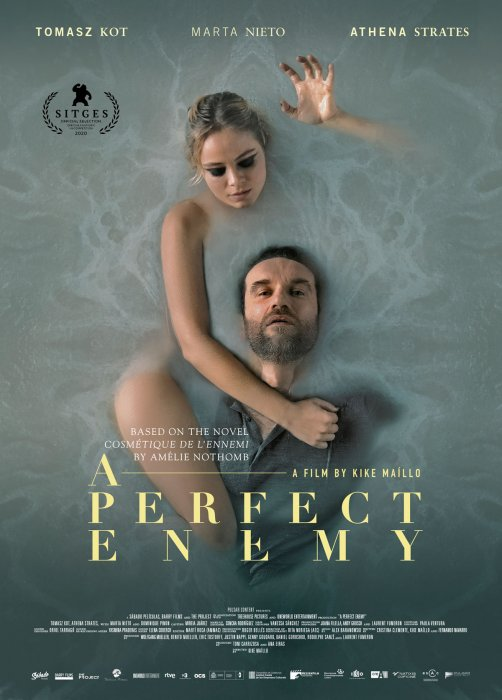 A Perfect Enemy : Affiche