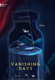 Affiche de Vanishing Days