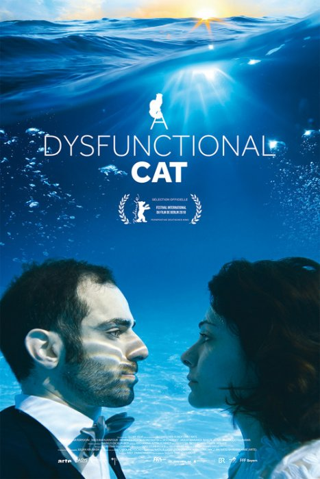 A Dysfunctional cat : Affiche