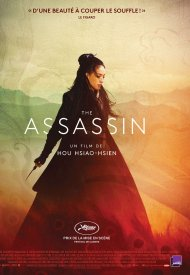 Affiche de The Assassin