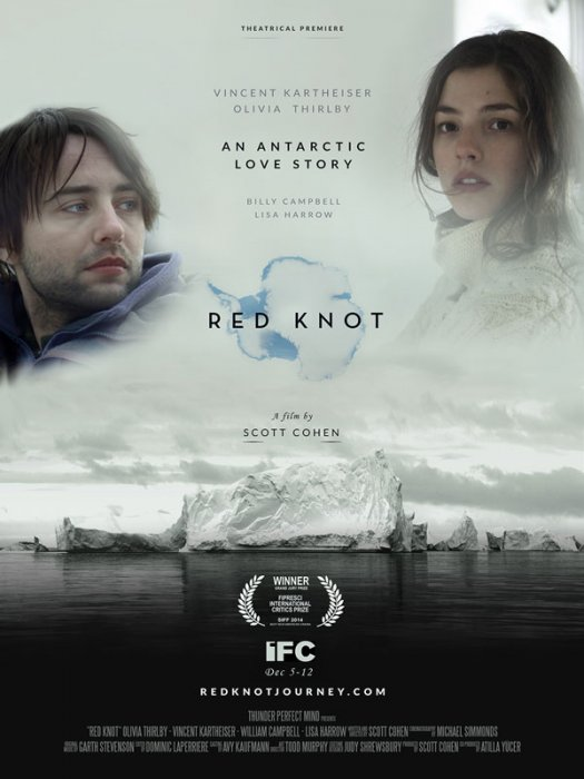 Red Knot : Affiche