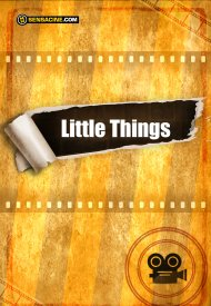 Affiche de The Little Things