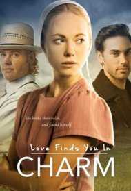 Affiche de Love Finds You In Charm