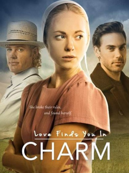 Love Finds You in Charm : Affiche