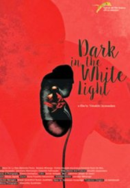 Affiche de Dark in the White Light
