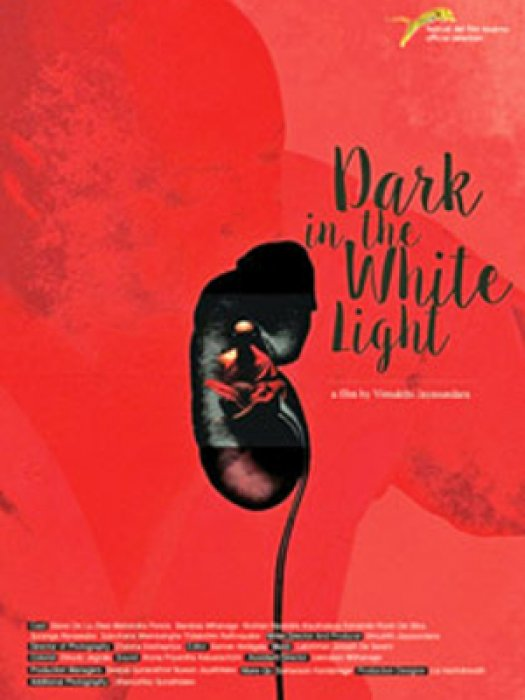 Dark in the White Light : Affiche
