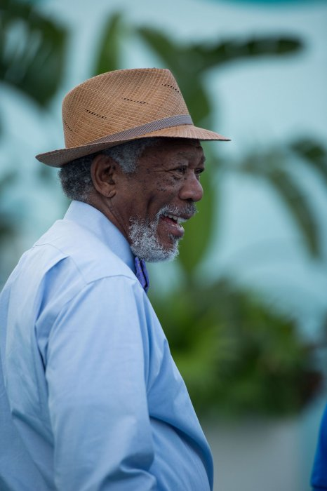 L'Incroyable Histoire de Winter le dauphin 2 : Photo Morgan Freeman