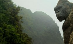 Godzilla vs Kong : on fait le point sur le casting