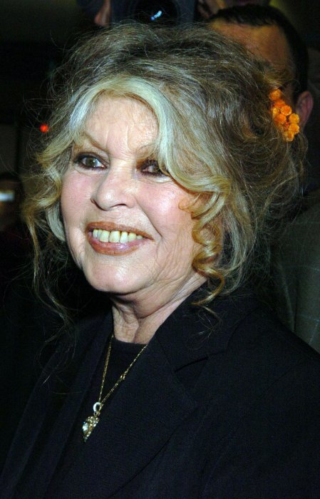 Photo d'archive de Brigitte Bardot datant de 2004.