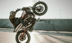 Vidéo Indian Scout FTR 1200 Custom : Flat Track en mode stunt !