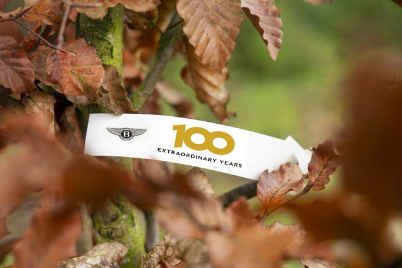 Bentley Motors: 100 ans, 100 arbres