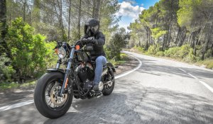 Harley-davidson Sportster Forty-Eight 2016