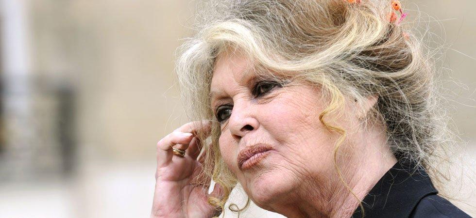 """Pour Brigitte Bardot, les Réunionnais sont """"une population dégénérée"""""""